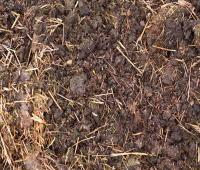 使うのは、こだわりの有機肥料のみ。
