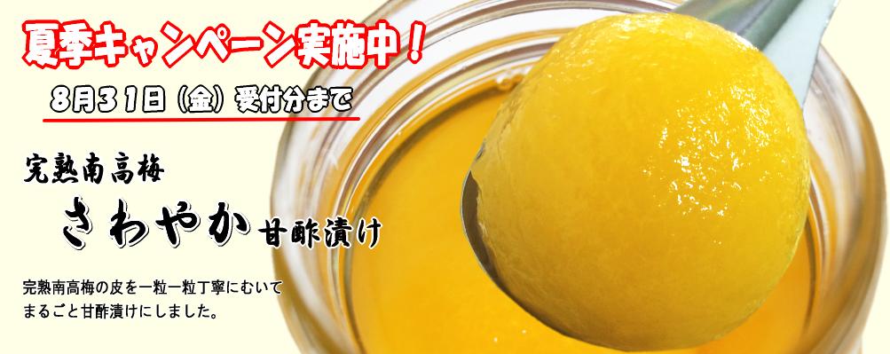 さわやか甘酢漬け 夏季キャンペーン実施中!